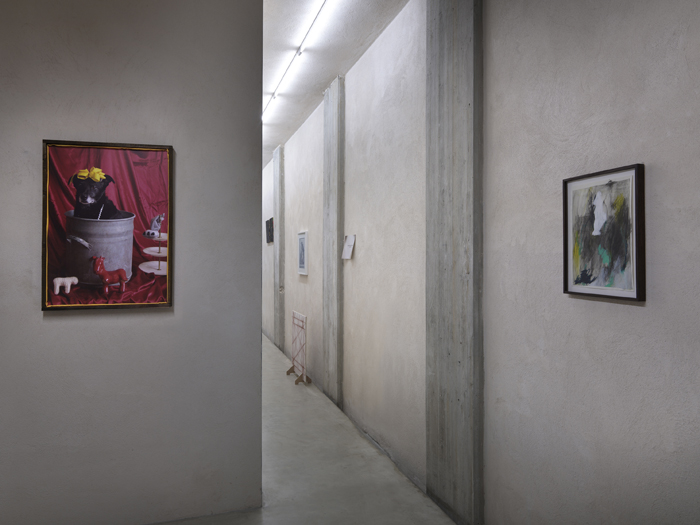 exhibition view at Car drde, Bologna